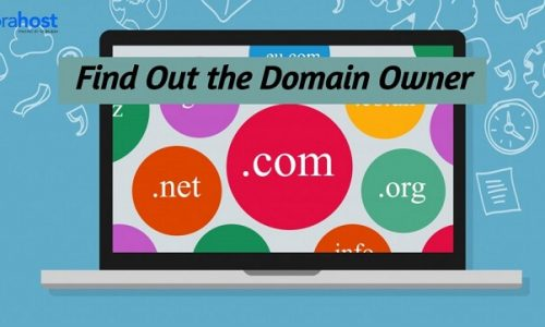 How to Find Out Who the Domain Name Owner Is?