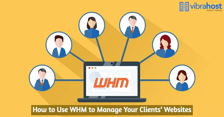 How to Use WHM to Manage Your Clients' Websites